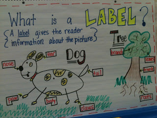 Writer's Workshop Labeling!
