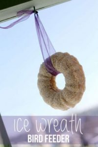 ice-wreath-bird-feeder-433x650