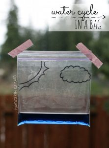 Super-fun-science-for-kids.-Make-the-water-cycle-in-a-bag-758x1024