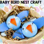 Baby Bird Nest Craft