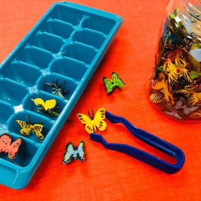 Fine Motor Activities for Young Learners
