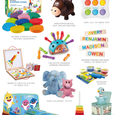 2019 Early Childhood Kids Toy Guide (For Ages 2-5)