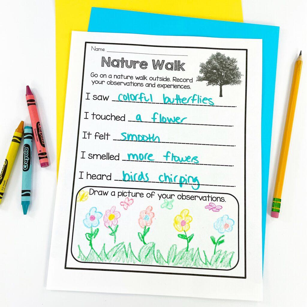 Teaching Kids About Their Senses: Nature Walk